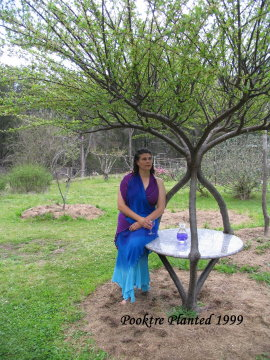 Becky with Growing garden table