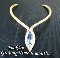 grown neckpiece